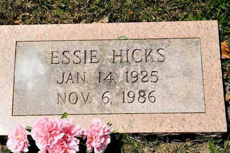 HICKS, ESSIE - Richland County, Ohio   ESSIE HICKS - Ohio Gravestone Photos