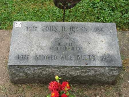 HICKS, JOHN H. - Richland County, Ohio | JOHN H. HICKS - Ohio Gravestone Photos