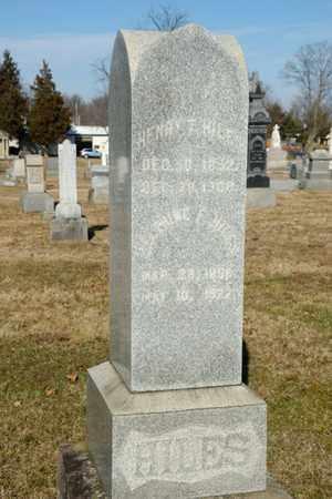 FOX HILES, DELPHINE F - Richland County, Ohio | DELPHINE F FOX HILES - Ohio Gravestone Photos
