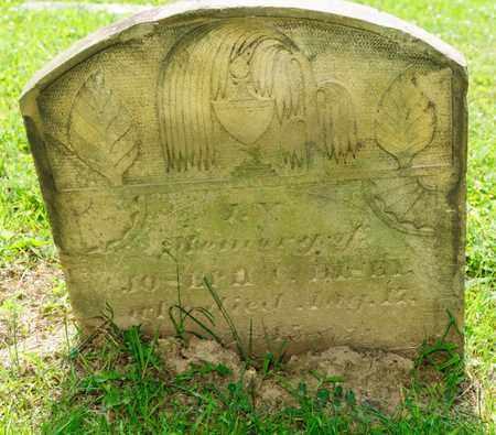 HISEY, JOSEPH C - Richland County, Ohio | JOSEPH C HISEY - Ohio Gravestone Photos