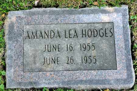 HODGES, AMANDA LEA - Richland County, Ohio | AMANDA LEA HODGES - Ohio Gravestone Photos