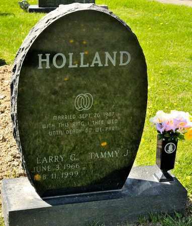 HOLLAND, LARRY G - Richland County, Ohio   LARRY G HOLLAND - Ohio Gravestone Photos