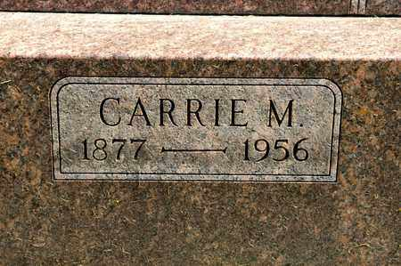 HOLTZ, CARRIE M - Richland County, Ohio | CARRIE M HOLTZ - Ohio Gravestone Photos