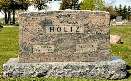 HOLTZ, DRUSILLA - Richland County, Ohio | DRUSILLA HOLTZ - Ohio Gravestone Photos