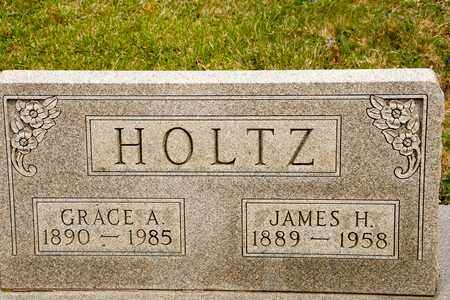 HOLTZ, JAMES H - Richland County, Ohio | JAMES H HOLTZ - Ohio Gravestone Photos