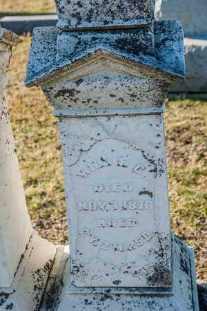 HOUPT, WILLIE C - Richland County, Ohio | WILLIE C HOUPT - Ohio Gravestone Photos