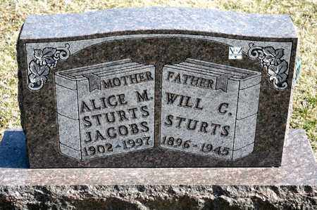 STURTS, WILL C - Richland County, Ohio | WILL C STURTS - Ohio Gravestone Photos