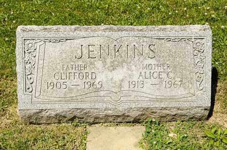 JENKINS, ALICE C - Richland County, Ohio | ALICE C JENKINS - Ohio Gravestone Photos