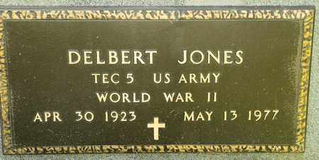 JONES, DELBERT - Richland County, Ohio | DELBERT JONES - Ohio Gravestone Photos