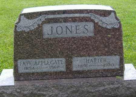 APPLEGATE JONES, FAYE - Richland County, Ohio | FAYE APPLEGATE JONES - Ohio Gravestone Photos