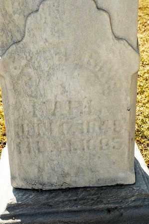 SCHUSTER KARL, CATHERINE - Richland County, Ohio | CATHERINE SCHUSTER KARL - Ohio Gravestone Photos