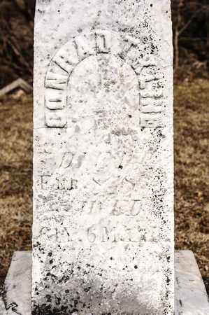 KLINE, CONRAD T - Richland County, Ohio | CONRAD T KLINE - Ohio Gravestone Photos