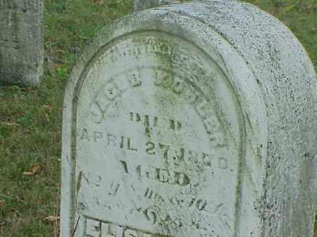 KOHLER, ELIZABETH - Richland County, Ohio | ELIZABETH KOHLER - Ohio Gravestone Photos