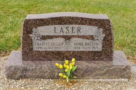 LASER, CHARLES FESLER - Richland County, Ohio | CHARLES FESLER LASER - Ohio Gravestone Photos