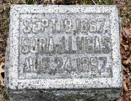 LUCAS, CORA J - Richland County, Ohio   CORA J LUCAS - Ohio Gravestone Photos