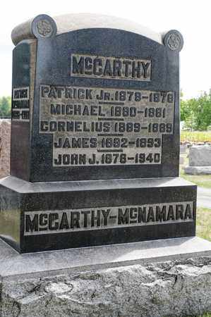 MCCARTHY, MICHAEL - Richland County, Ohio | MICHAEL MCCARTHY - Ohio Gravestone Photos