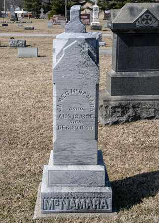 MCNAMARA, JULIA ANN - Richland County, Ohio | JULIA ANN MCNAMARA - Ohio Gravestone Photos