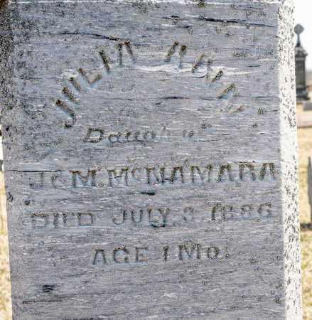 MCNAMARA, JULIA ANN - Richland County, Ohio | JULIA ANN MCNAMARA - Ohio Gravestone Photos