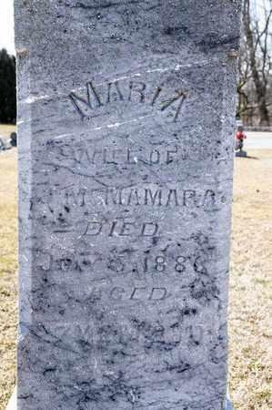 MCNAMARA, MARIA - Richland County, Ohio | MARIA MCNAMARA - Ohio Gravestone Photos