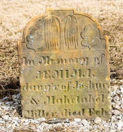 MILLER, JEMIMA - Richland County, Ohio | JEMIMA MILLER - Ohio Gravestone Photos