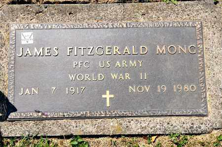 MONG, JAMES FITZGERALD - Richland County, Ohio   JAMES FITZGERALD MONG - Ohio Gravestone Photos