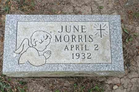 MORRIS, JUNE - Richland County, Ohio   JUNE MORRIS - Ohio Gravestone Photos