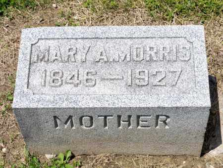 MORRIS, MARY A - Richland County, Ohio | MARY A MORRIS - Ohio Gravestone Photos
