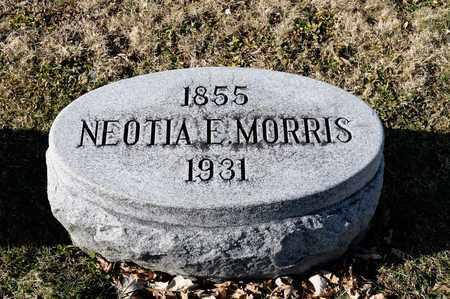 MORRIS, NEOTIA E - Richland County, Ohio   NEOTIA E MORRIS - Ohio Gravestone Photos