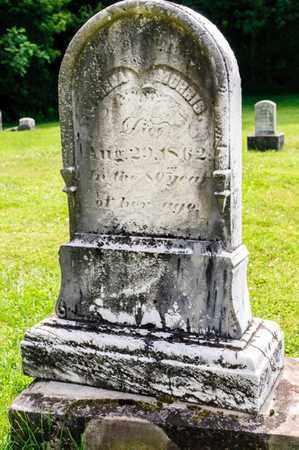 MORRIS, TRYPHENA - Richland County, Ohio | TRYPHENA MORRIS - Ohio Gravestone Photos