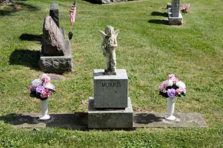 MORRIS, UNKNOWN - Richland County, Ohio | UNKNOWN MORRIS - Ohio Gravestone Photos