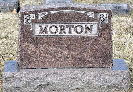 PRY MORTON, JULIA - Richland County, Ohio | JULIA PRY MORTON - Ohio Gravestone Photos