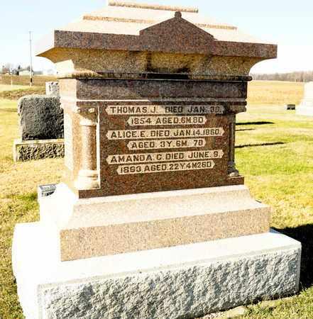 MYERS, AMANDA C - Richland County, Ohio | AMANDA C MYERS - Ohio Gravestone Photos