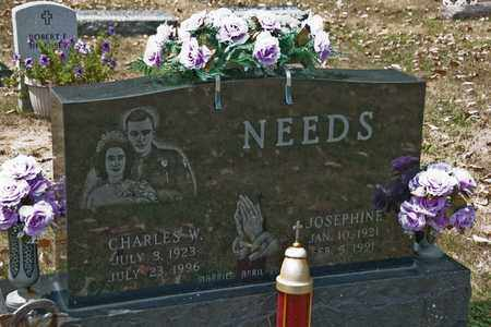 NEEDS, CHARLES W - Richland County, Ohio | CHARLES W NEEDS - Ohio Gravestone Photos