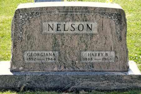 NELSON, GEORGIANA - Richland County, Ohio | GEORGIANA NELSON - Ohio Gravestone Photos