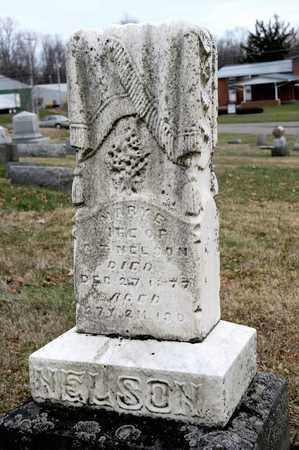 NELSON, MARY E - Richland County, Ohio | MARY E NELSON - Ohio Gravestone Photos