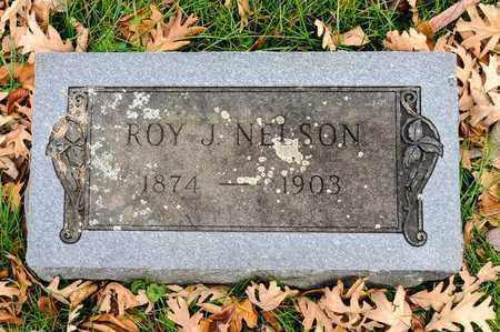 NELSON, ROY J - Richland County, Ohio | ROY J NELSON - Ohio Gravestone Photos