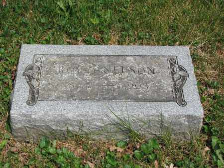 NELSON, ROY J. - Richland County, Ohio | ROY J. NELSON - Ohio Gravestone Photos