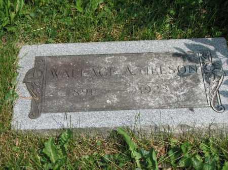 NELSON, WALLACE A. - Richland County, Ohio | WALLACE A. NELSON - Ohio Gravestone Photos