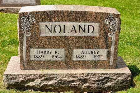 NOLAND, AUDREY - Richland County, Ohio | AUDREY NOLAND - Ohio Gravestone Photos