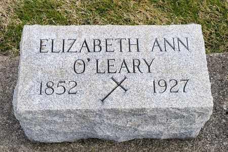 O'LEARY, ELIZABETH ANN - Richland County, Ohio   ELIZABETH ANN O'LEARY - Ohio Gravestone Photos