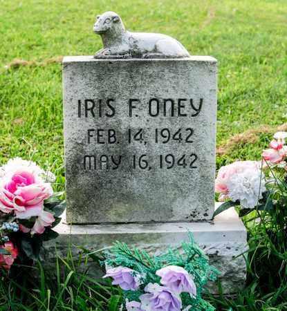 ONEY, IRIS F - Richland County, Ohio | IRIS F ONEY - Ohio Gravestone Photos