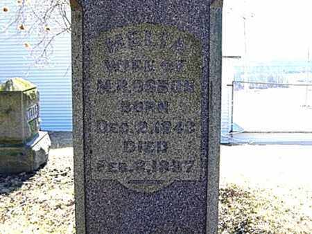 OSBUN, AMELIA C. - Richland County, Ohio | AMELIA C. OSBUN - Ohio Gravestone Photos