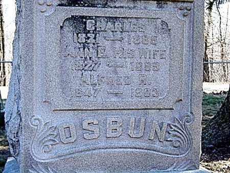 OSBUN, ANN E. - Richland County, Ohio | ANN E. OSBUN - Ohio Gravestone Photos