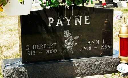 PAYNE, ANN L - Richland County, Ohio | ANN L PAYNE - Ohio Gravestone Photos