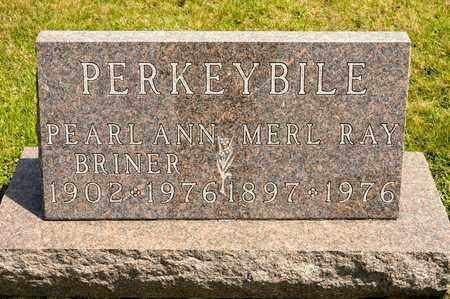 PERKEYBILE, PEARL ANN - Richland County, Ohio | PEARL ANN PERKEYBILE - Ohio Gravestone Photos