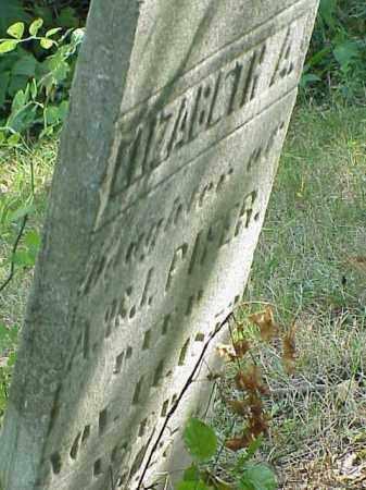 PIFER, ELIZABETH A. - Richland County, Ohio | ELIZABETH A. PIFER - Ohio Gravestone Photos