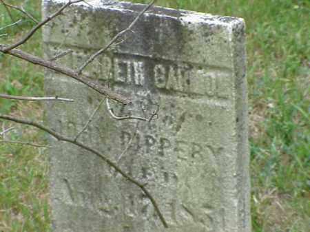 PIPPERY, ELIZABETH GARMON - Richland County, Ohio   ELIZABETH GARMON PIPPERY - Ohio Gravestone Photos