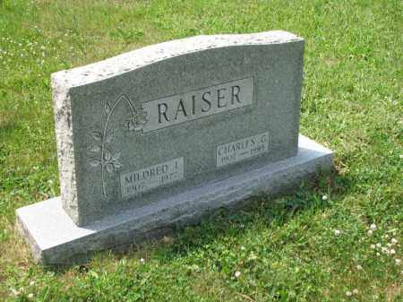 RAISER, CHARLES G. - Richland County, Ohio | CHARLES G. RAISER - Ohio Gravestone Photos