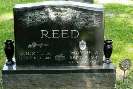 REED, WAYNE A - Richland County, Ohio | WAYNE A REED - Ohio Gravestone Photos