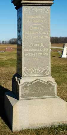 REX, EMMA J - Richland County, Ohio | EMMA J REX - Ohio Gravestone Photos